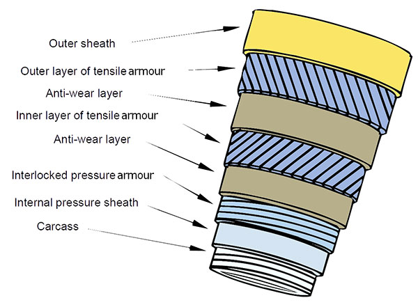 Layers of a flexible riser